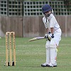 Cricket - in to bat