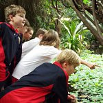 Year 5's Exotic Travels